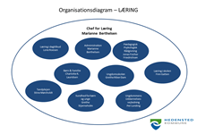 Organisationsdiagram for Læring